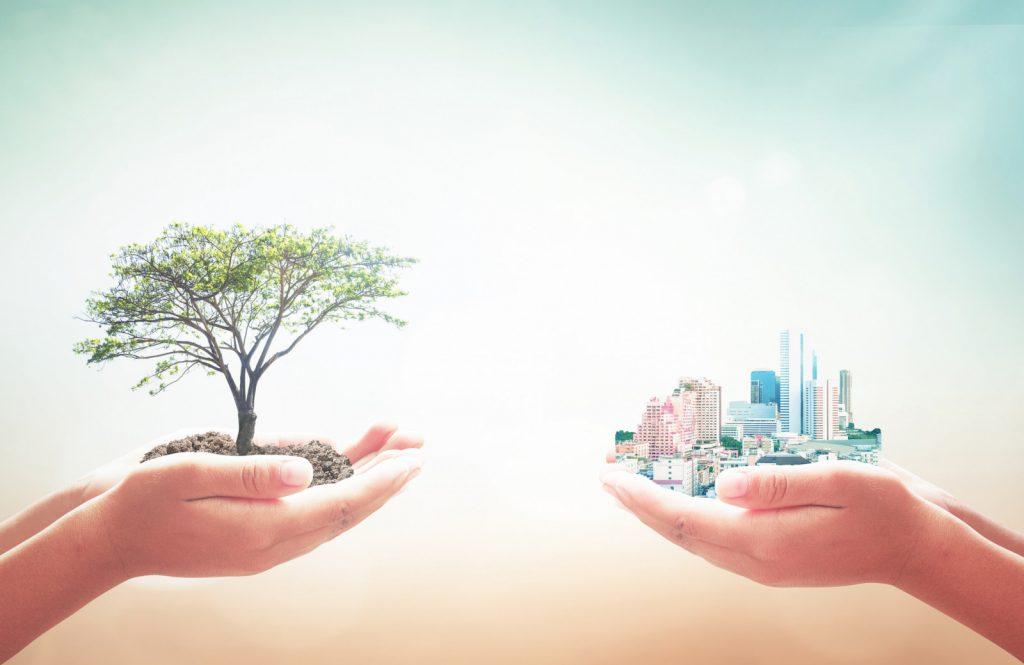 Der weitere Weg zum klimaneutralen Gebaeude
